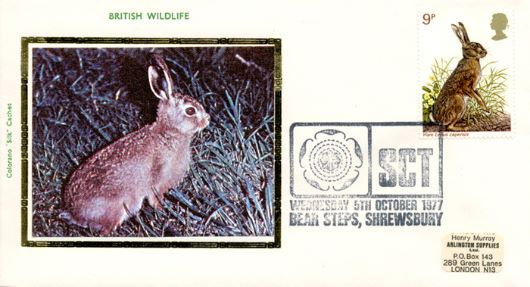 British Wildlife, Hare