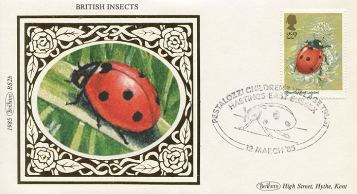 British Insects, Ladybird