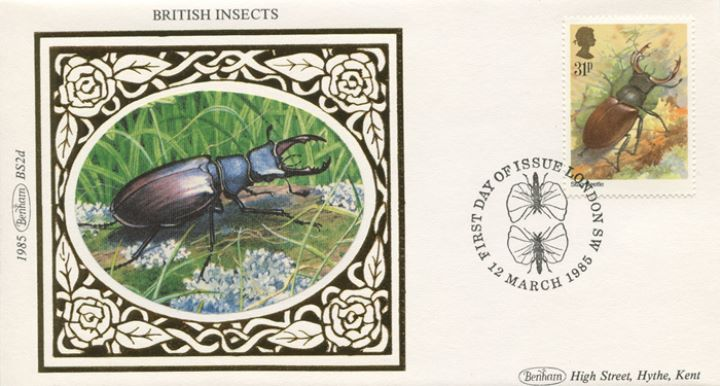 British Insects, Stag Beetle