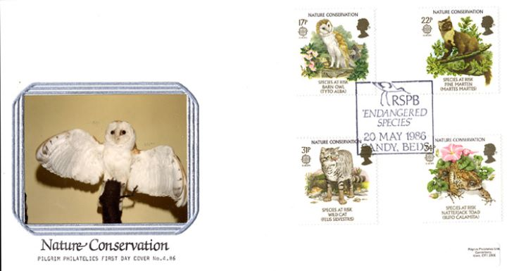 Species at Risk, The Barn Owl