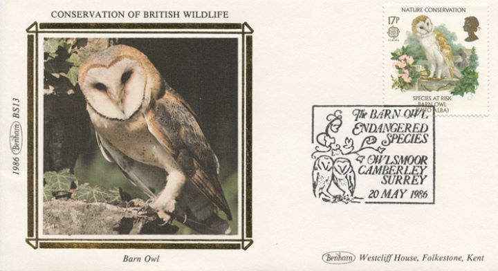 Species at Risk, Barn Owl