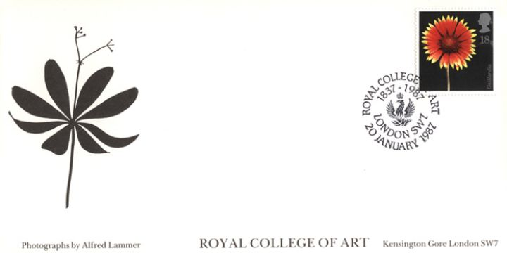 Flowers, Royal College of Art