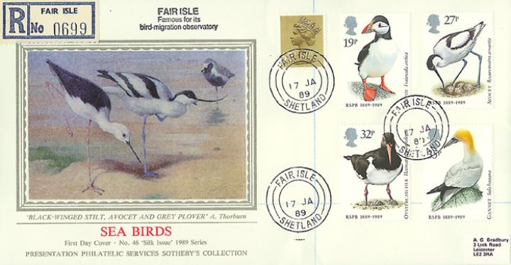 Sea Birds, Stilt,  Avocet &  Plover