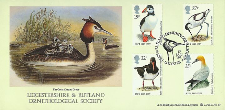 Sea Birds, Leics & Rutland Ornithological Soc