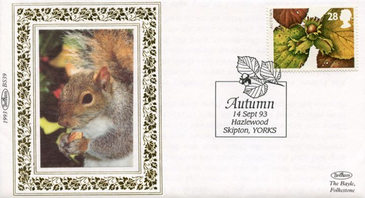 4 Seasons: Autumn, Squirrel