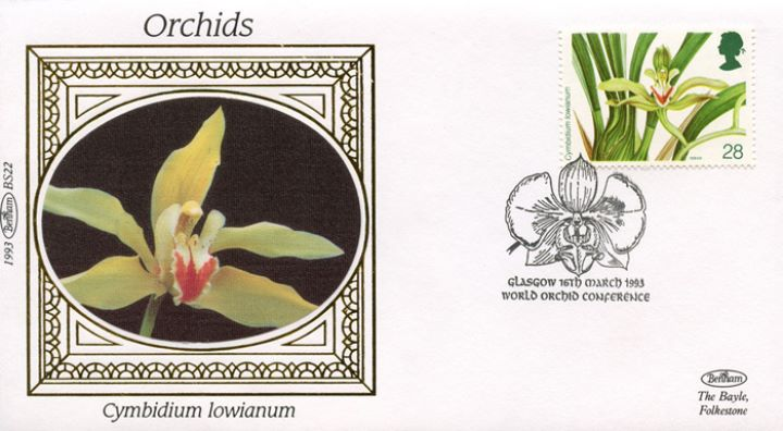 Orchid Conference, Cymbidium Iowianum