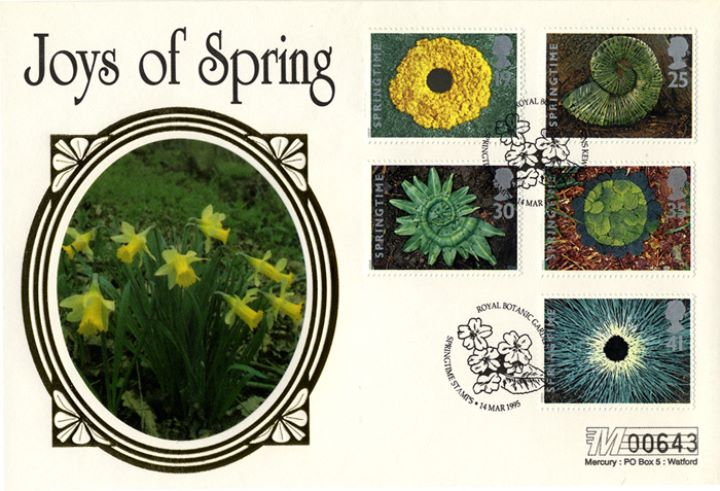 4 Seasons: Spring, Daffodils