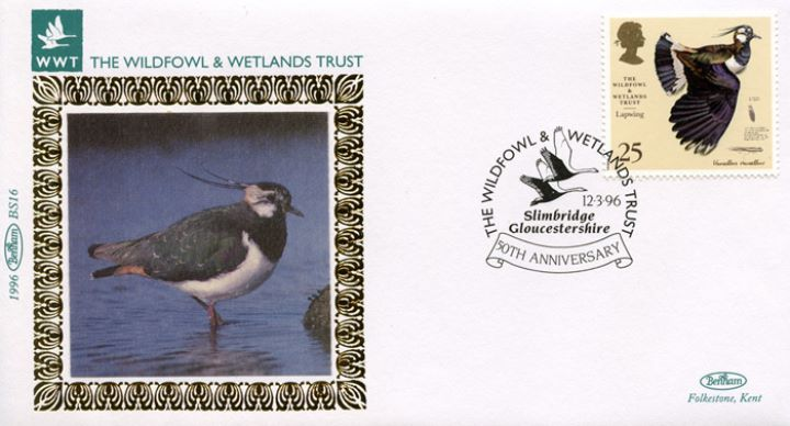 Wildfowl & Wetlands Trust, Lapwing