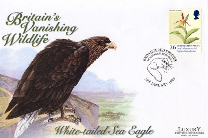 Endangered Species, White-tailed Sea Eagle