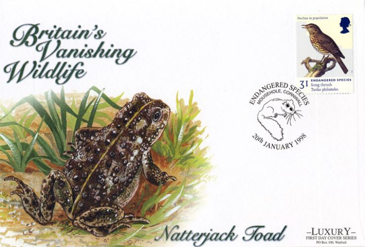 Endangered Species, Natterjack Toad