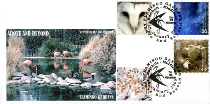 Above & Beyond, Flamingo Gardens