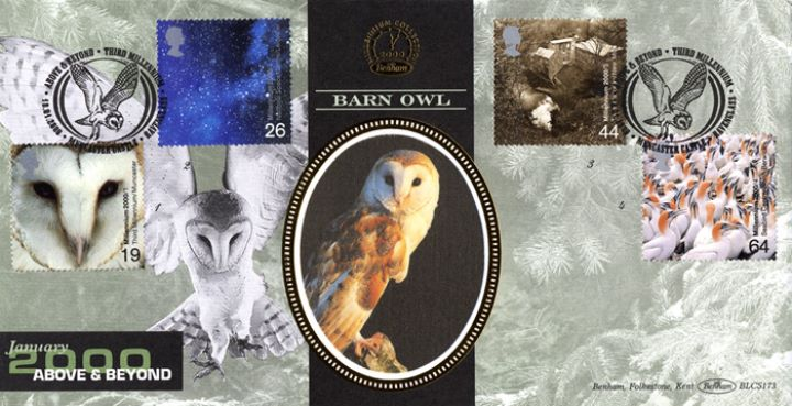 Above & Beyond, Barn Owl