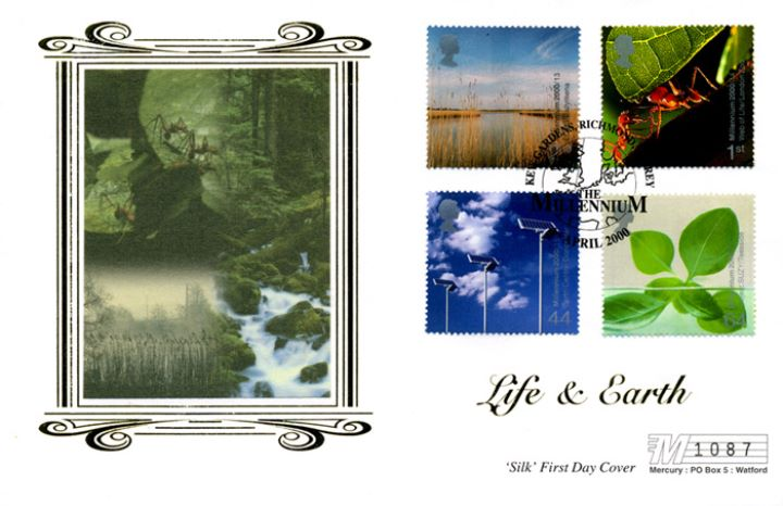 Life & Earth, Forest and Waterfalls