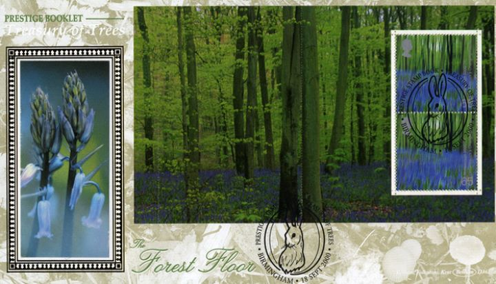 PSB: Trees - Pane 3, Bluebell