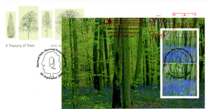 PSB: Trees - Pane 3, Bluebells in Wood