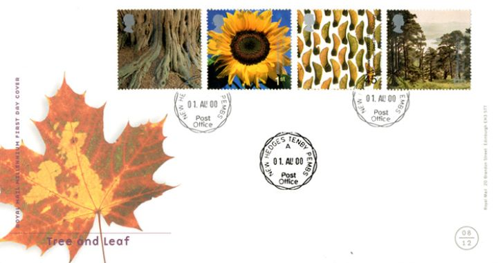 Tree & Leaf, CDS Postmarks