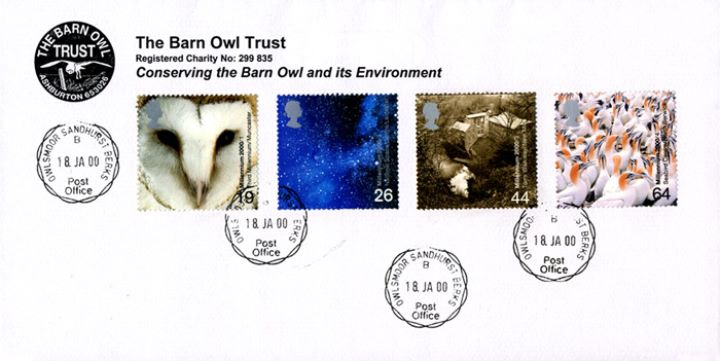 Above & Beyond, The Barn Owl Trust