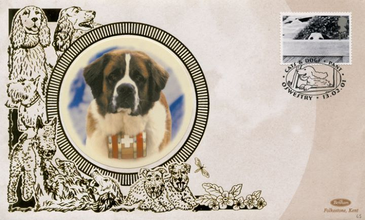Cats & Dogs, St Bernard