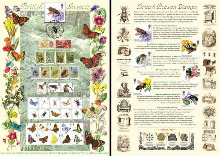 Bees, British Insects