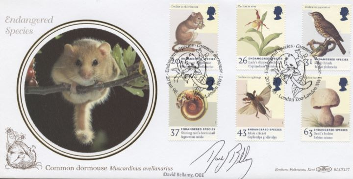 Endangered Species, David Bellamy signed