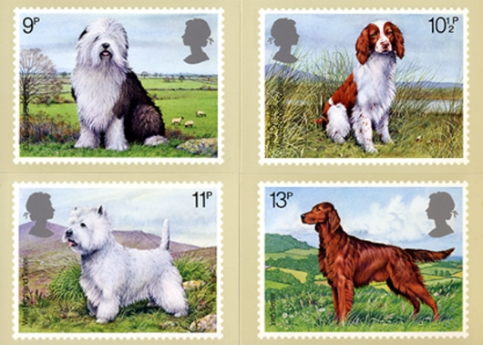 British Dogs PHQ Card
