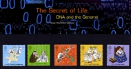 The Secret of Life: DNA