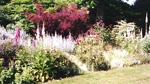 Gardens & Gardening Theme