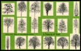 PSB: A Treasury of Trees