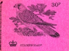 Stitched: New Design: 30p Birds 5 (Kestrel)