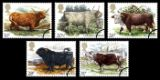 Click to view all covers for British Cattle