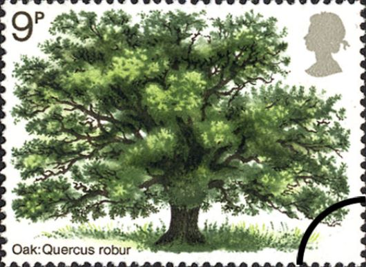 British Trees - The Oak Stamp(s)