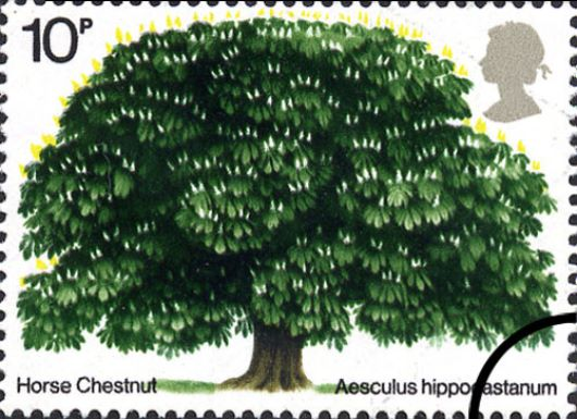 British Trees - The Horse Chestnut Stamp(s)