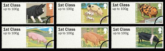 Farm Animals: Series No.2, Pigs Stamp(s)