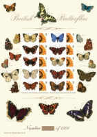 British Butterflies History of Britain No.18