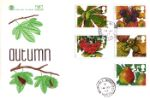 4 Seasons: Autumn Horse Chestnut