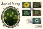 4 Seasons: Spring Daffodils