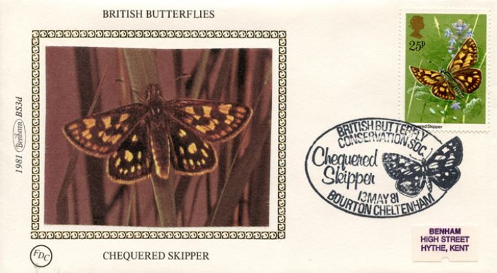 Butterflies, Chequered Skipper