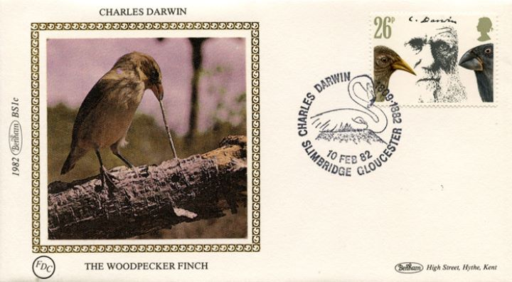 Charles Darwin, The Woodpecker Finch