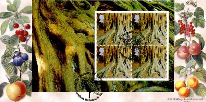 PSB: Trees - Pane 5, Yews for the Millennium