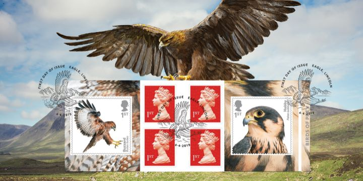 Self Adhesive: Birds of Prey, Eagle in Highlands
