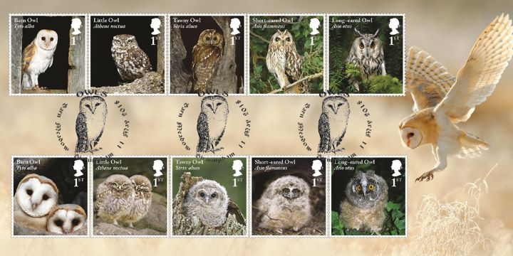 owls first day cover bfdc