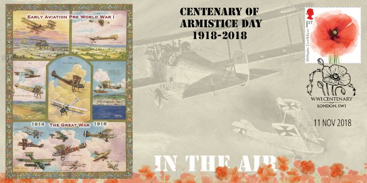 Armistice Day Centenary, Early World War Aircraft