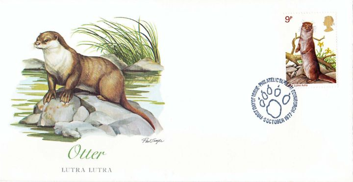British Wildlife, Otter