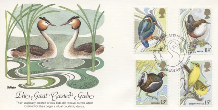 British Birds 1980, The Great Crested Grebe