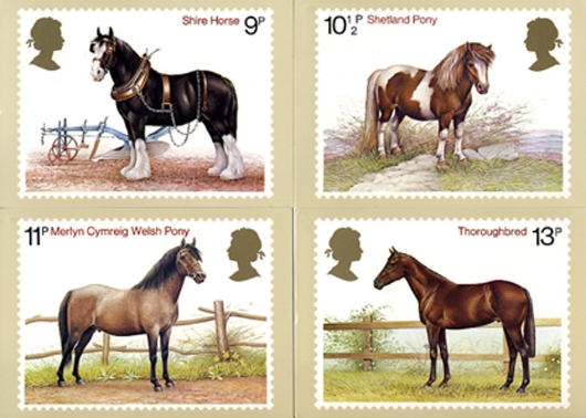 Shire Horse Society PHQ Card