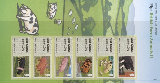 Farm Animals: Series No.2, Pigs Presentation Pack
