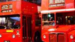 Buses Theme