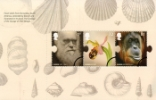 View enlarged 'PSB: Charles Darwin - Pane 3' Image.