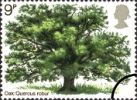 View enlarged 'British Trees - The Oak' Image.