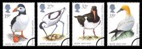 View enlarged 'Sea Birds' Image.